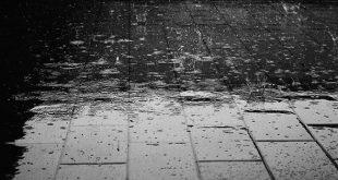 Pronostican lluvias en el sureste del país por onda tropical N°12