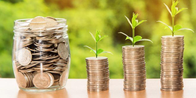dinero, inversión, ahorro, tiempo, crecimiento, verde, inversión