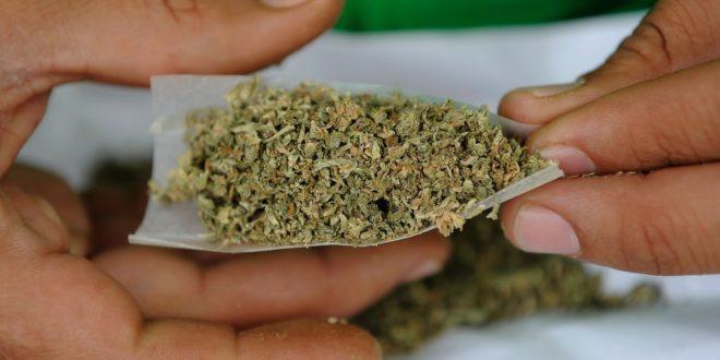 Aprueban legalización de la mariguana en Canadá, marihuana