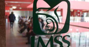 Reconocen al IMSS como líder internacional en investigación científica para tratar alergias