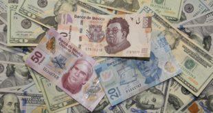 """El dólar estadounidense se cotiza en promedio este martes en 19.02 pesos a la venta y en 17.52 pesos a la compra, en ventanillas de casas de cambio ubicadas en el Aeropuerto Internacional """"Benito Juárez"""" de la Ciudad de México. La billete verde se ofrece hasta en 19.25 pesos, mientras que el precio más bajo es de 17.50 pesos a la compra, peso"""