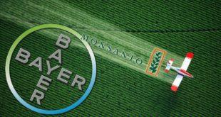Cofece condiciona fusión de Bayer y Monsanto