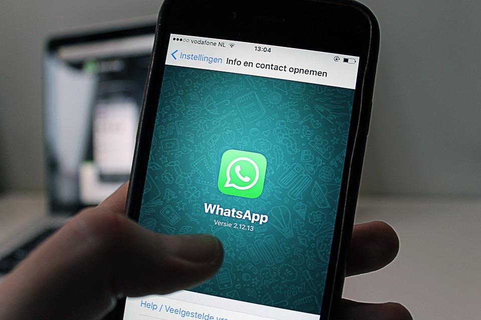 Robustece WhatsApp su aplicación para negocios con Wavy