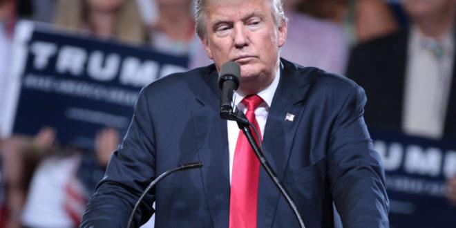 """""""Regresen a su país"""": Donald Trump a caravana migrante"""