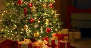 Árbol de navidad, precio varía hasta casi 70% en modelos similares