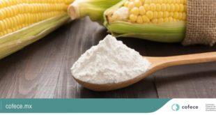 Investiga Cofece posible práctica monopólica en el mercado de harina de maíz