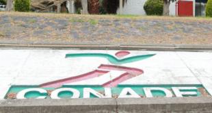 Investiga Función Pública a la Conade por presuntos actos de corrupción