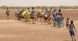 Volumen de desplazados supera los 70 millones en 2018: ACNUR