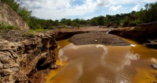 Tribunal otorga amparo contra Grupo México por daño en Río Sonora