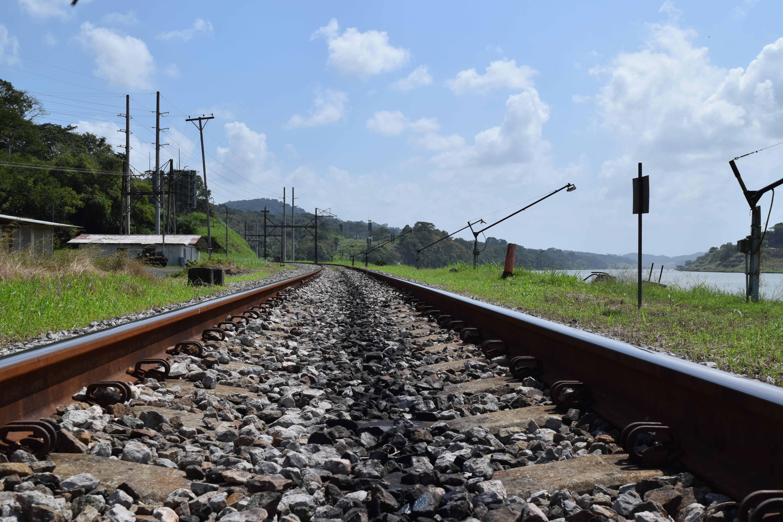 Licitación para el Tren Maya arrancará en enero