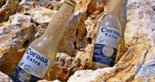 Constellation Brands, Corona, Cerveza