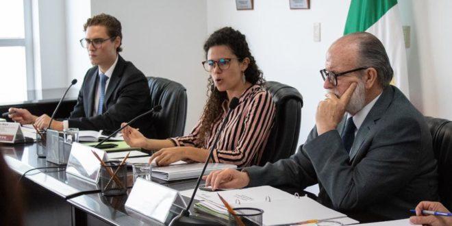 Sindicatos tendrán prórroga para acatar reforma laboral: Luisa Alcalde, STPS