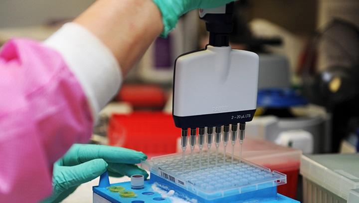 Vacuna estadounidense contra coronavirus da señales positivas de respuesta inmune