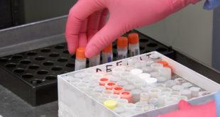 Pfizer inicia pruebas experimentales de vacuna contra el coronavirus en EU