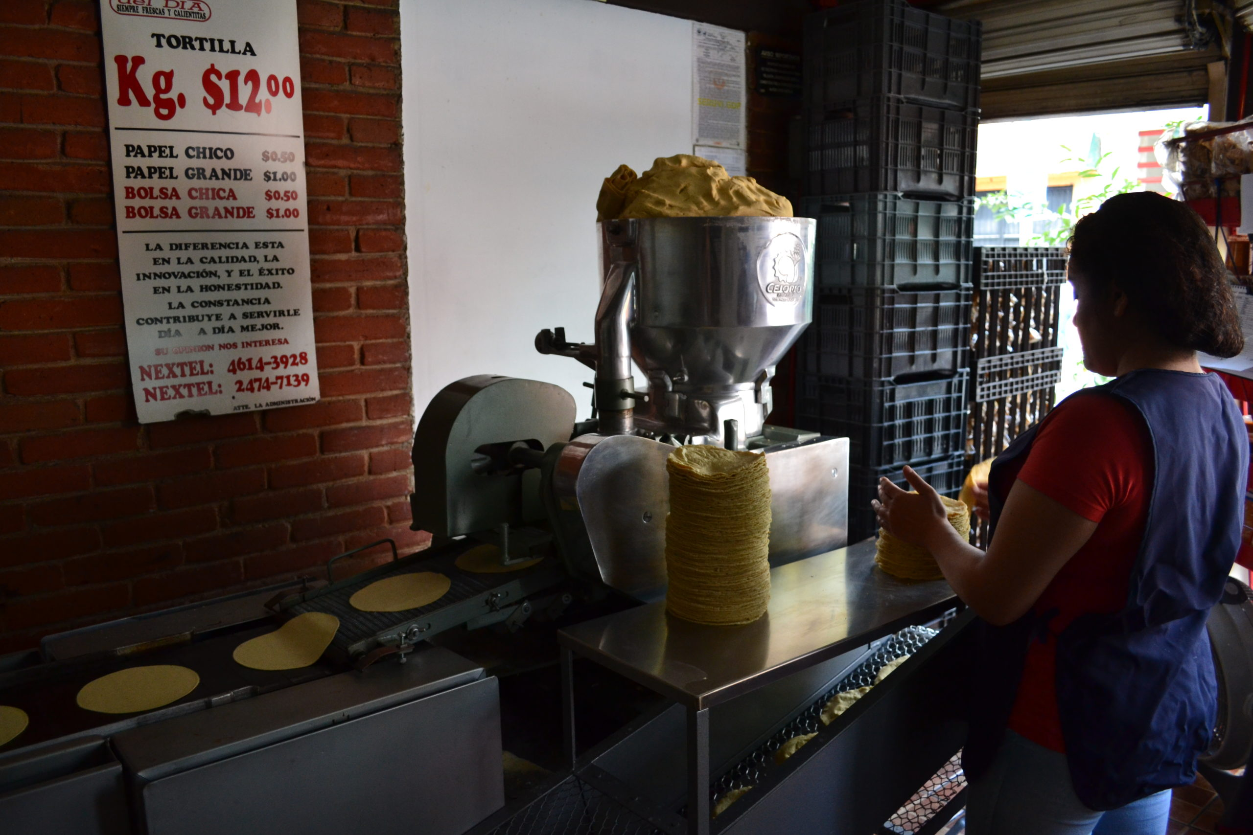 Banco Mundial, Secretaría de Economía negociará con productores de tortilla para que no suban precios