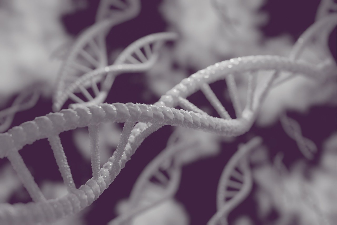 La edición genética es el futuro... y ya puedes invertir en su tecnología