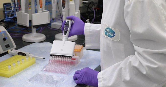 laboratorio, Pfizer, vacuna