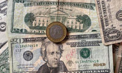 remesas familiares dólares