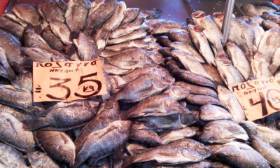 ¿Cuál COVID? Multitudes acuden a mercado de La Viga por Cuaresma
