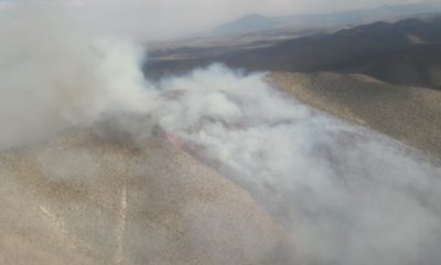 Emiten declaratoria de desastre natural por incendios en Nuevo León