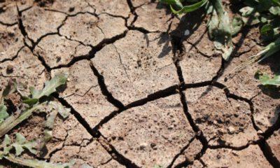 Sequía amainó ligeramente en mayo: Conagua