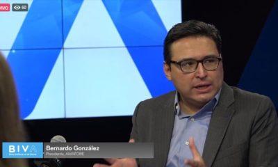 Bernardo González / Biva