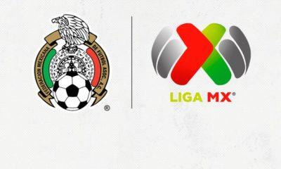 FMF, Liga MX