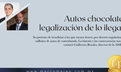 Entrevista con Guillermo Rosales, director de la AMDA