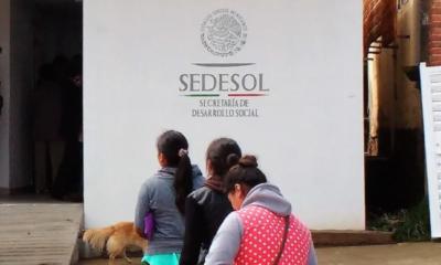 Sedesol, Orozco Martínez